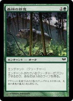 画像1: 森林の好意