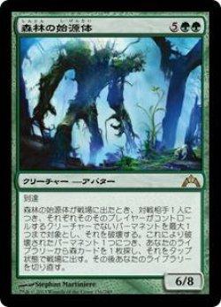 画像1: 森林の始源体