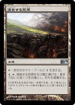 画像1: 浸食する荒原