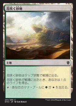 画像1: 花咲く砂地