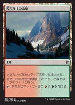 画像1: 岩だらけの高地
