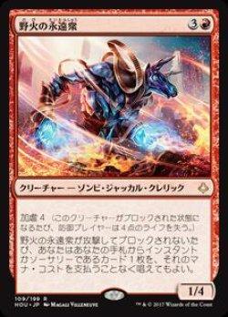 画像1: 野火の永遠衆