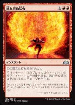 画像1: 逃れ得ぬ猛火