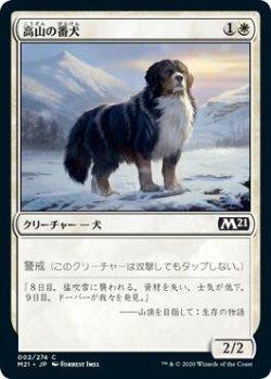 画像1: 高山の番犬