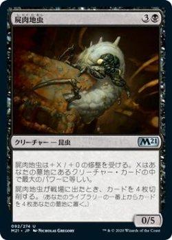 画像1: 屍肉地虫