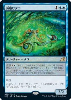 画像1: 海駆けダコ