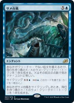 画像1: サメ台風